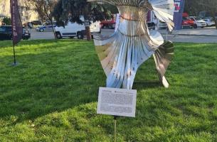 rzeźba Ostrokwiat (Dni Pabianic)